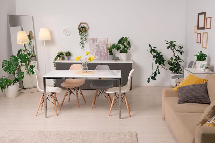 Zona living estiva: consigli per rinfrescare la casa